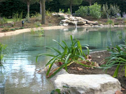 fontaine naturelle, cascade dans un jardin aquatique