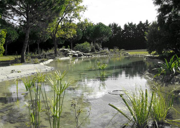 résultat final du bassin et sa cascade naturelle